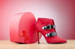 ботинки женщины способа принципиальной схемы Стоковая Фотография RF