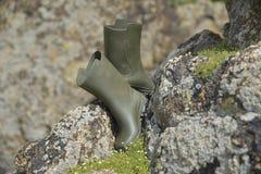 ботинки зеленый wellington стоковая фотография