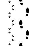Ботинки и лапки собаки Стоковая Фотография