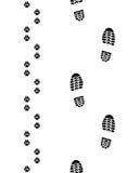 Ботинки и лапки Стоковая Фотография
