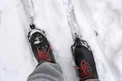 Ботинки и лыжи лыжи в снеге стоковые фотографии rf