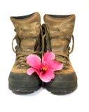 ботинки коричневеют 2 Стоковая Фотография RF