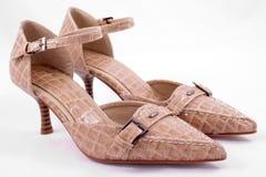 ботинки накрененные крокодилом высокие Стоковые Фото