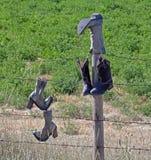 Ботинки на загородке Стоковая Фотография RF