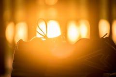 Ботинки спорта блеска, предпосылка захода солнца Стоковая Фотография RF
