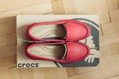 Ботинки Crocs на деревянном поле партера Стоковое фото RF