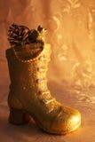 ботинок золотистый стоковая фотография rf