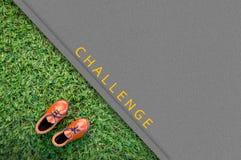 Ботинок игрушки кожаный на поле травы Стоковое Фото