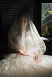 ботинок кристалла невесты Стоковые Фотографии RF