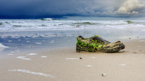 Ботинок на пляже Стоковые Фото