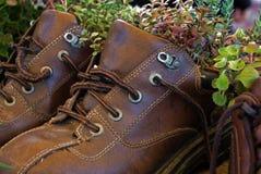 ботинок плантатора Стоковое Фото