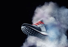 Ботинок пыли Стоковые Изображения RF