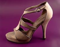 ботинок пятки высокий Стоковые Фото