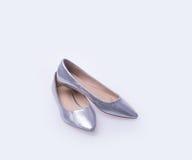ботинок Серебряные ботинки женщины моды цвета на предпосылке Стоковые Изображения RF