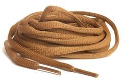 ботинок шнурков Стоковое Изображение RF