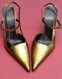ботинок стоковая фотография rf