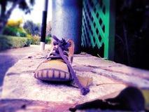 Ботинок childe Стоковые Фотографии RF