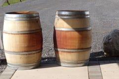 2 бочки вина сидя в Солнце Стоковые Изображения RF