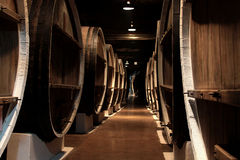 Бочонки вина в подвале винодельни Стоковое фото RF