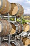 Бочонки вина на винограднике Стоковое Изображение RF