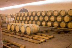Бочонки вина дуба Стоковые Фотографии RF