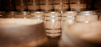 Бочонки вина штабелированные в погребе, винограднике Бордо Стоковые Фото