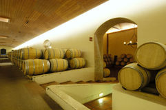 Бочонки вина Стоковое Изображение RF