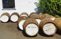Бочонки вискиа против белой стены стоковое изображение