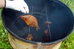 Бочонок коптильни рыб линей дыма перчатки руки Стоковые Фото