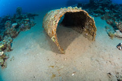 Бочонок на дне моря Стоковое фото RF