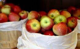 Бочонок яблок стоковая фотография