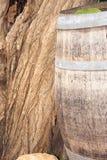 бочонок Стоковая Фотография RF