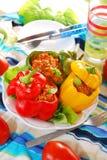 Болгарские перцы заполненные с семенить мясом Стоковые Фотографии RF