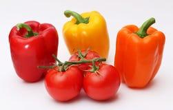 Болгарские перцы и томаты на лозе Стоковая Фотография