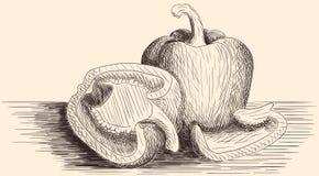 Болгарские перцы нарисованные рукой Стоковые Изображения RF