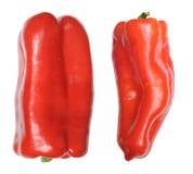 Болгарские перцы Стоковое Фото