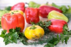 Болгарский перец красного, желтого и зеленого перца Стоковое Изображение