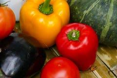 Болгарский перец, томат баклажан, тыква Стоковые Изображения
