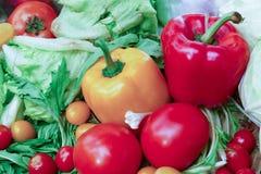 Болгарский перец, томат Салат айсберга Стоковая Фотография RF