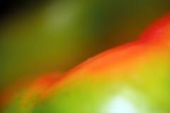 Болгарский перец Стоковые Изображения