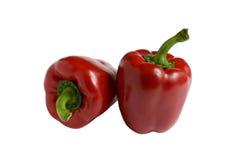 Болгарский перец Стоковые Фото