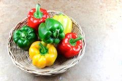 3 болгарского перца цвета Стоковые Фото