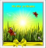 Более зеленая трава с бабочками в солнечности Стоковое Изображение