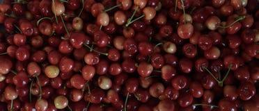 Более ненастные вишни, взгляд макроса стоковое изображение rf