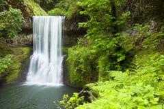 Более низкие падения юга, серебр понижаются парк штата, Орегон, США стоковые фотографии rf