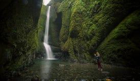 Более низкое Oneonta понижается водопадом расположенным в западном ущелье, Орегоне Стоковое Изображение