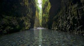 Более низкое Oneonta понижается водопадом расположенным в западном ущелье, Орегоне стоковая фотография