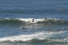 Более старый серфер падая пока едущ волна Стоковая Фотография