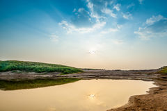 болото Стоковое фото RF