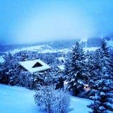 Бодрствование вверх под снегом стоковое фото rf